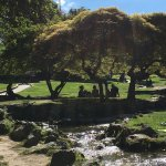 Foto de Parco del Valentino