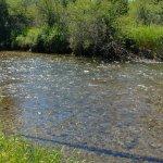 Canoeing upstream