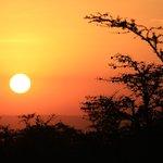 Photo de Naboisho Camp, Asilia Africa