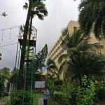 Photo de The Resort