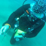 Cory (PADI) with Maui Dreams Dive Co, showing us some local marine life.