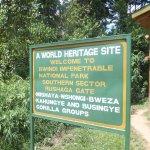 Information gate