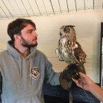 Tariq the Eagle Owl