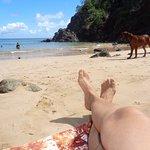Foto de Praia do Cachorro