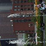 20170714_165711_large.jpg
