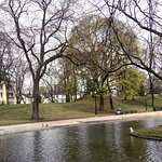 Photo of The Palace Park