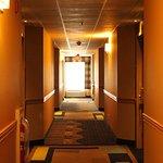 Foto de Holiday Inn Express Lewisburg/New Columbia