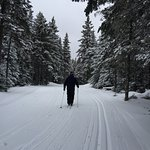 Great place for cross country skiing. The cabin in the woods with hot chocolate is adorable