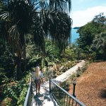 Foto de Seagull Cove Resort