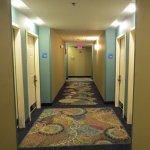 Foto de Holiday Inn Express Clermont