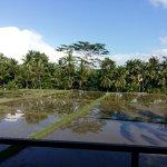 Photo de Junjungan Ubud Hotel and Spa