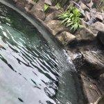 Arenal Kioro Suites & Spa Foto
