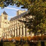 La cathédrale St Etienne depuis le jardin de l'Archevêché