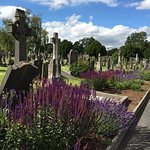A sunny summer day in Dublin! Great day to go to a cemetery.