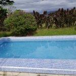 Photo de Hotel Jardines Arenal