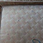 Dirty Chair, Best Western Lafayette Inn, Lafayette
