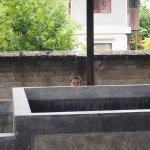 Aung Myae Oo Monastic Education School
