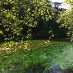 Photo de Fontaine de Vaucluse