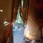Foto de Hollybush Inn & Campsite