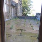 More roof top weeds