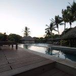 Adults pool