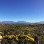 View towards the Hottentots Holland from the top of the mountain opposite the main farm house