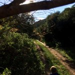 The track alongside the Caracal River Cottage, a magical place for a small boy