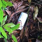 Various objects of litter in grounds.  This is a beer car.