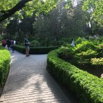 The Imperial Garden of The Palace Museum Foto