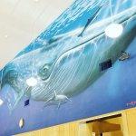Foto de LeRoys Blue Whale