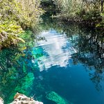 Photo of Cenote Crystal