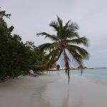 Bandos Maldives Foto