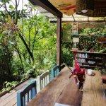 Up in the Hill - Coffee Shop & Organic Farm Foto