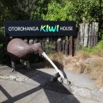 Photo of Otorohanga Kiwi House & Native Bird Park