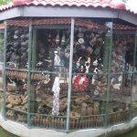 Photo of Cambodia Landmine Museum