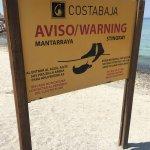 Foto de Club de Playa at Costa Baja Resort