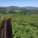 Photo of Day Tours Wicklow