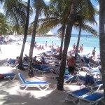 Playa viva dominicus