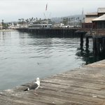 Photo de Stearns Wharf