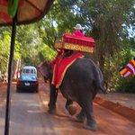Photo of Terrace of the Elephants
