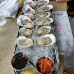 a dozen assorted oysters