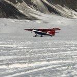 Photo of Talkeetna Air Taxi