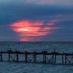 Lankayan Island Dive Resort-billede