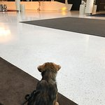 Photo of Scandic Oslo Airport