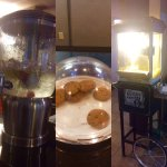 Provided for guests in reception: Iced water on arrival, evening cookies, popcorn machine.