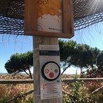 Photo of Barcelo Punta Umbria Mar