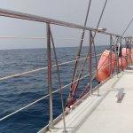Photo de MAXICAT catamaran