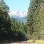 Drive as we left Holland Lake Lodge