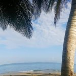Beautiful Dorado Beach