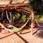 Terraza / Lounge area